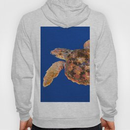 Loggerhead sea turtle Hoody