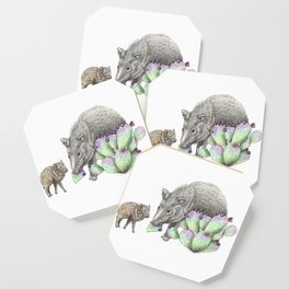 Javelina Family Coaster
