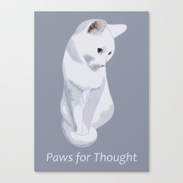 Paws for Thought - White Cat Sitting Canvas Print