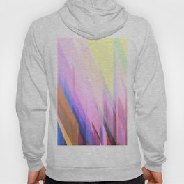 Abstract Composition 738 Hoody