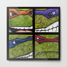 Teenage Mutant Ninja Turtles Set Metal Print