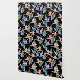 Birdie Tropical Black Wallpaper