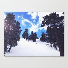 Snow Landscape  Canvas Print