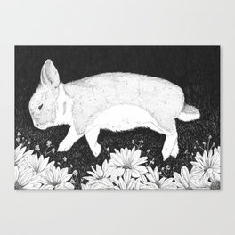bunny in black and white Canvas Print