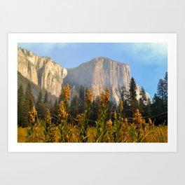 Fall at El Capitan Art Print