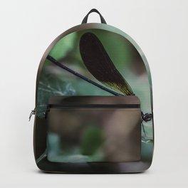 Slider control Backpack