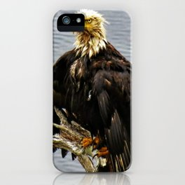 Eagle Drip Dry iPhone Case
