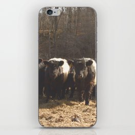 Baby Cows iPhone Skin