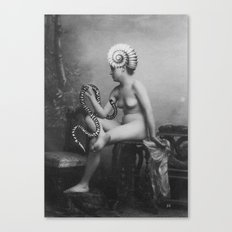 Shell Girl Canvas Print