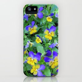 Flowers in Holland iPhone Case