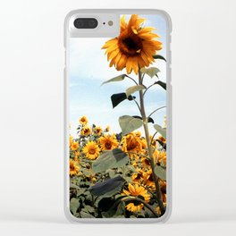 Sunflower Photograph Clear iPhone Case