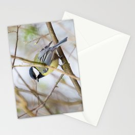 The Great Tit Stationery Cards