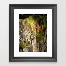 Fairy Castle Framed Art Print