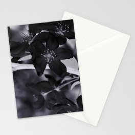 Raven Lilies Stationery Cards