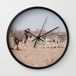 Hello Zebras Wall Clock