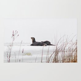 Three Otters Rug