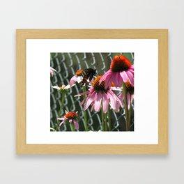 Attending Flowers Framed Art Print