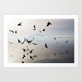 dancing birds Art Print