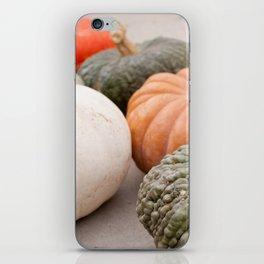 pumpkins at autumn iPhone Skin
