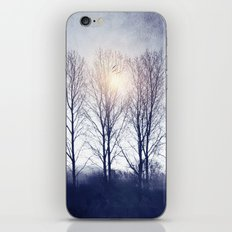 Winter Sequence II iPhone & iPod Skin