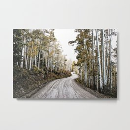 A Winding Autumn Road Metal Print