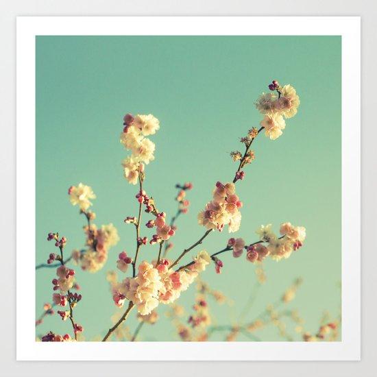 Spring memory Art Print