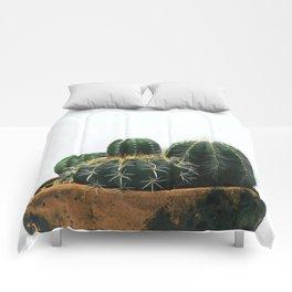 02_Cactus Comforters