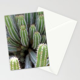 Nature on form Cactus photograhy no.3 Stationery Cards