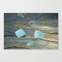 Paint Texture 585 Canvas Print