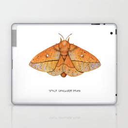 Spiny Oakworm Moth (Anisota stigma) Laptop & iPad Skin