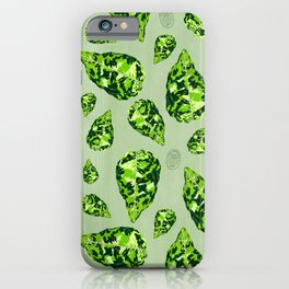 Aglaonema Pictum Tricolor iPhone Case