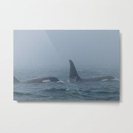 Ballena and Crewser Metal Print