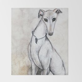 The Greyhound Wearing His Thorn Throw Blanket