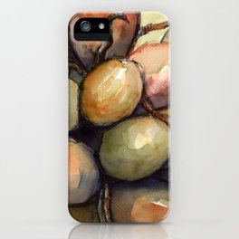 Tropical Palm Tree Coconuts iPhone Case