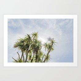 Cornish Palms Art Print