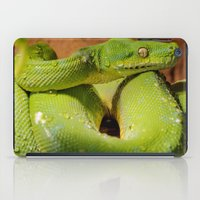 monty python iPad Cases featuring Green Tree Python by Photography by LutzPeter