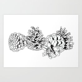 White Pine Cones Art Print