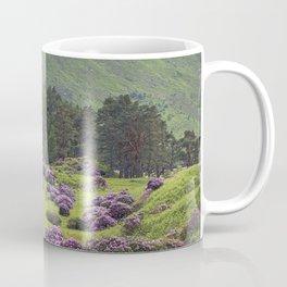 Complementary  my dear. Coffee Mug