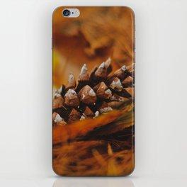 Fallen Pinecone iPhone Skin