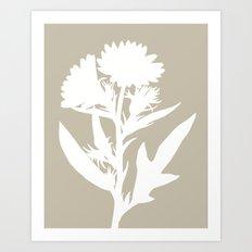 Silphium in Dove Gray - Original Floral Botanical Papercut Design Art Print