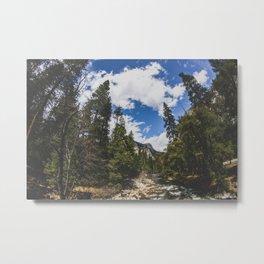 Fisheye Yosemite National Park, California Metal Print
