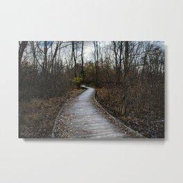 Wooden Winding Path Metal Print