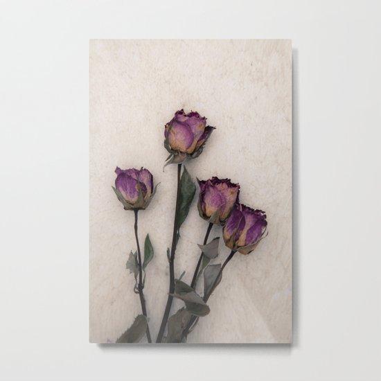 four dried roses Metal Print