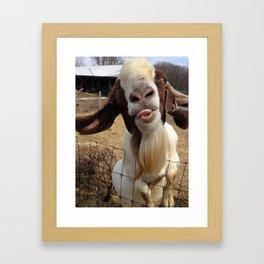 Goat Smiles Framed Art Print