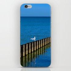 Lake Reflection iPhone & iPod Skin