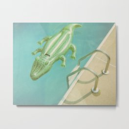 Alligator Ladder Metal Print