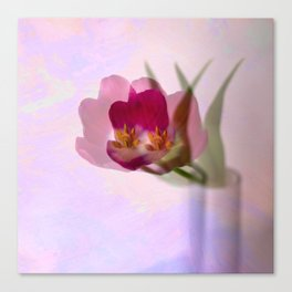 Ethereal tulip Canvas Print