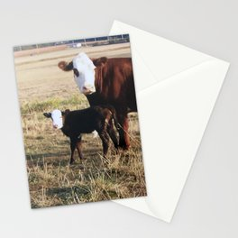 How Now Brown Cows #cows #farm  Stationery Cards
