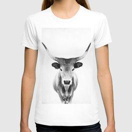 Honey - black and white T-shirt