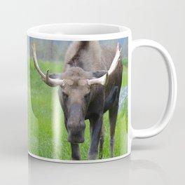 Bullwinkle Bull Coffee Mug